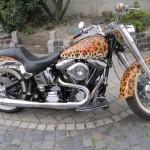 Motorrad_08_01